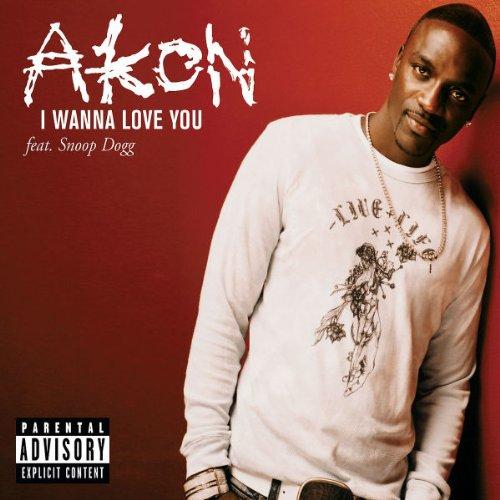 025 Akon I Wanna love you