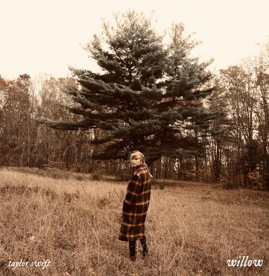 willow album cover